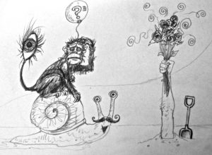 Confused monkey by Andrew Saggers