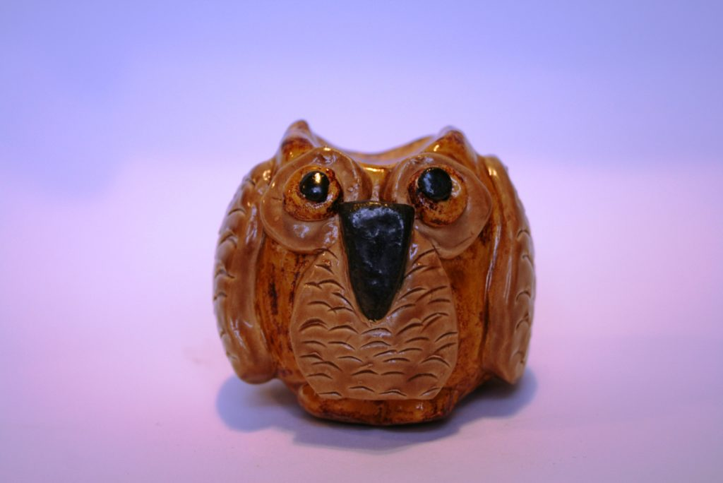 wise owl – Outside In