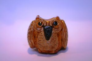 wise owl by paula parry