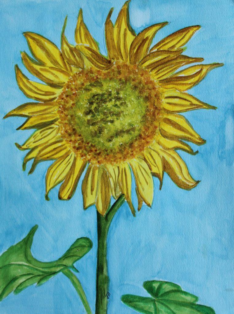 34922 || 5380 || Sunflower || NULL || 7883