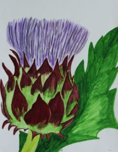 Thistle by Jacqueline  Herbert