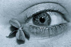 Eye by Sarah Clark