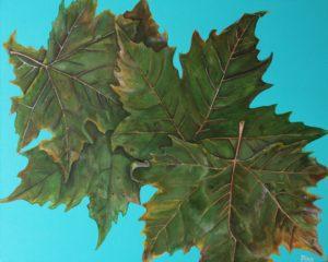 Leaves by Pinn