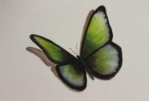 Green Butterfly by Lenny Jordan Blinding Art