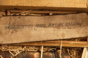 Exspressit et conflavit me Rossius. by Ross Gilbertson