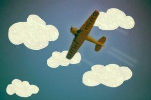 In Plane Flight by Beth  Davis-Hofbauer