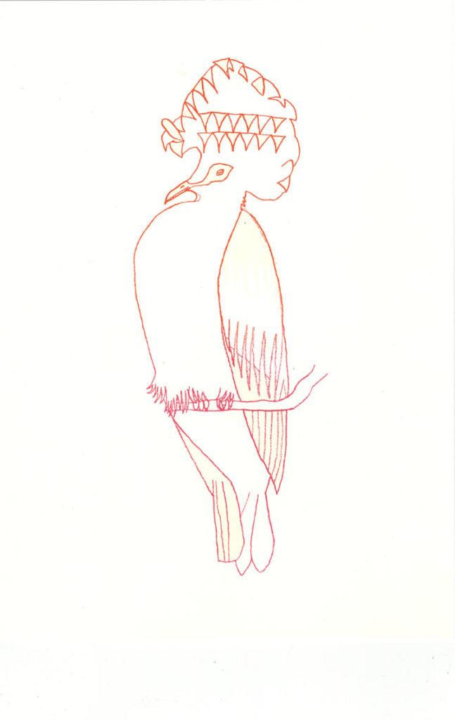 22105 || 2366 || tropical bird || prints available || 4766
