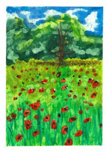 The Poppy Fields by Rosie Chivers
