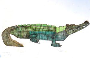 john_ackhurst_crocodile_42_x_30_pencil_crayon_on_paper by John Ackhurst