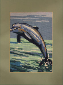 Dolphin by Katharine Mills