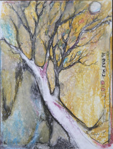 Old Tree by Kim F