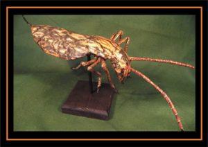 Beetle species faux taxidermy by Kuriologist