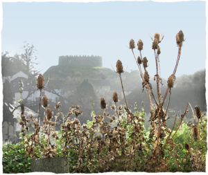 Castle with Teasles by John Battison