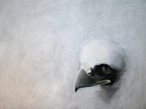 Left behind by Bjørn Hølbakken