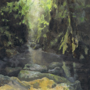 light_lichens__betws_y_coed by AVERIL CLIFFORD REES