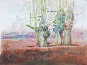 March Tree by Stephen Mundy