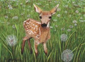 Meadow Fawn by Anni Golemienko