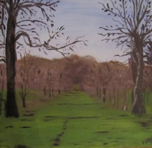 Merrions Wood early Spring by Joy Turner
