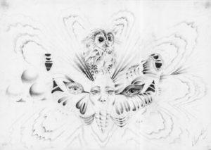 Metamorphosis by Reginald Harrison