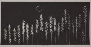 Moonlight by Noelle Basterfield