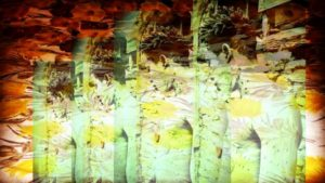 Head & Torso on Yellow Flowers by purplerose creativeservices @gmail.com