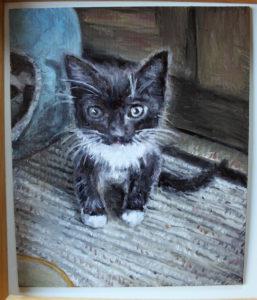 Kitten by Lucy Harding