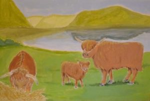 Highland Cattle by Sam Alabaster by The Friday Collective