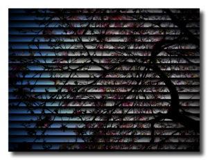 Outside in or Insideout by mumamafia