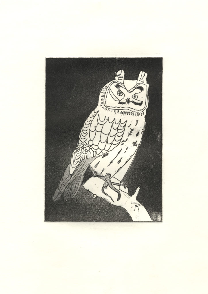 10544 || 2366 || Owl 1 || If you intend to put this work up for sale || NULL