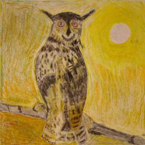 Owl by Robert McCamley