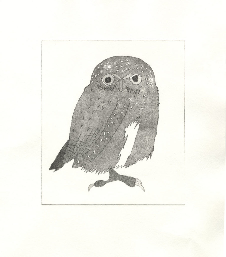 27365 || 2366 || Owl ||  || 6967