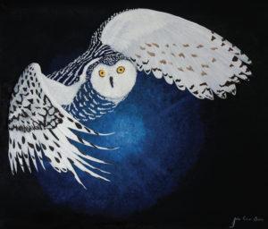 OWL VISION by JulioC artist