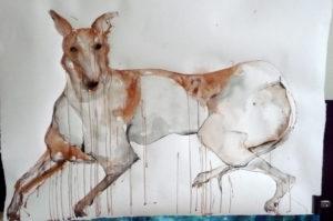 Study of Greyhound by Caroline Truss