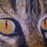 5411 || 1126 || Cat's Eyes 2005 || not for sale || 2292
