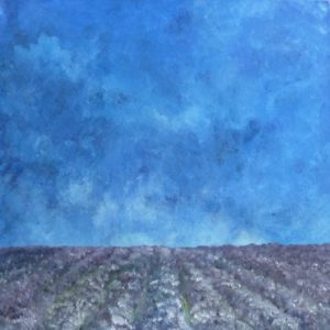 lavender field by alib