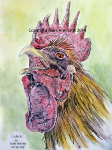 cockerel by horse