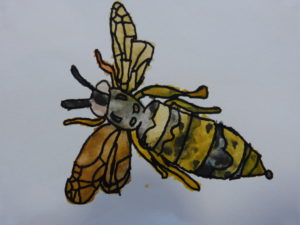 Wasp by Connor V