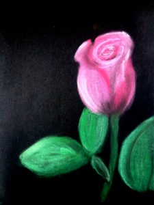 Night Time Rose by Isabelle McGowan