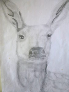 Deer by Isabelle McGowan