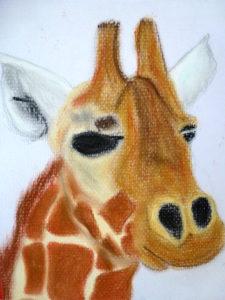 Giraffe by Isabelle McGowan