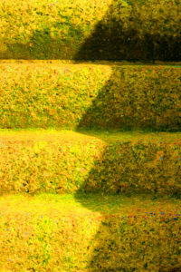 Steps by William Phillips 2