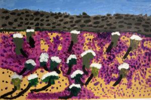 Pink Desert by Paige Donovan