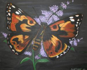 Painted Lady by Marjorie McLean