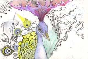 Peacock by Pye