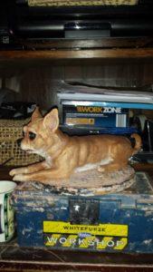 Romeo my pet Chihuahua by VJ Francis