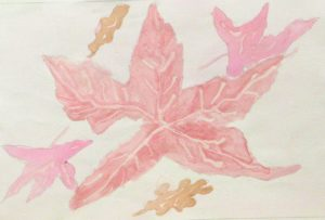Pink Leaves by Ali