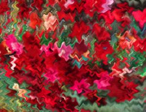 poppies1 by Ann Hardcastle