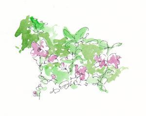 Flowers watercolour by LUIZA VAROVICI