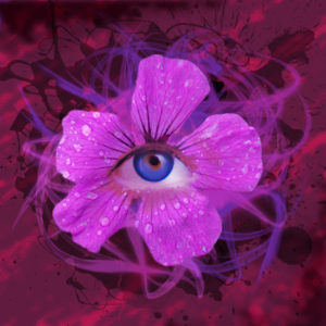 Eye see you. by Amanda Riley