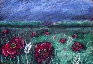Flowers in the meadow by John57
